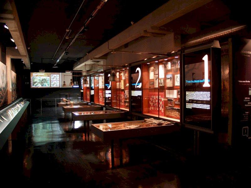 Día de los Museos: listado de actividades en Cuenca
