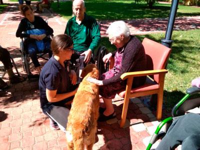 La terapia asistida con perros llega a la residencia de Casas de Benítez