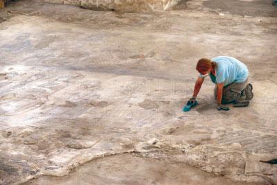 La Villa Romana de Noheda abrirá al público el 19 de julio