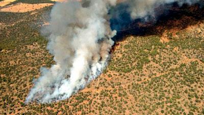 Medios aéreos y terrestres trabajan en la extinción de un fuego en Barchín del Hoyo