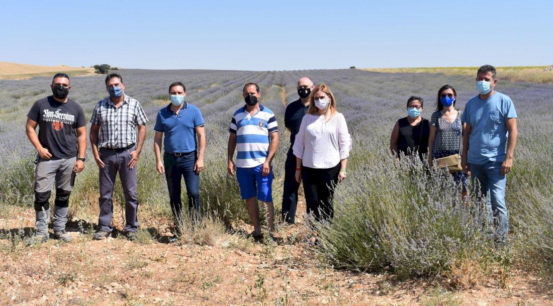 900 jóvenes se han incorporado a la agricultura en Cuenca en el último lustro