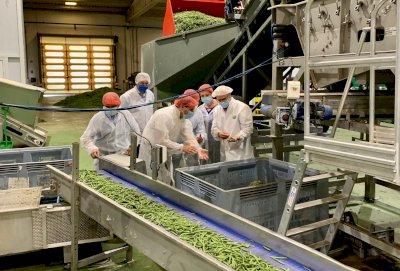 Tierra de Futuro: productos locales como valor añadido a la industria agroalimentaria