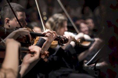 La cuerda frotada protagoniza las XIII Jornadas de Música en Cuenca
