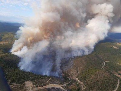 31 medios aéreos y terrestres y 120 personas trabajan en un incendio forestal en Víllora