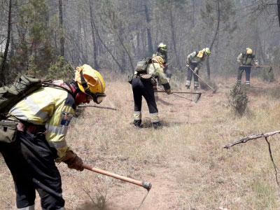 Castilla-La Mancha amplía hasta octubre la campaña de prevención y extinción de incendios