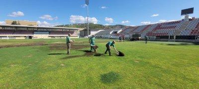 El Ayuntamiento comienza a resembrar el césped del estadio de la Fuensanta