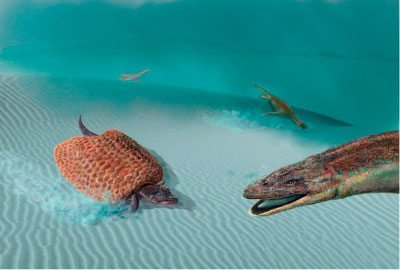 El MUPA acerca a los reptiles marinos que poblaron la tierra antes que los dinosaurios