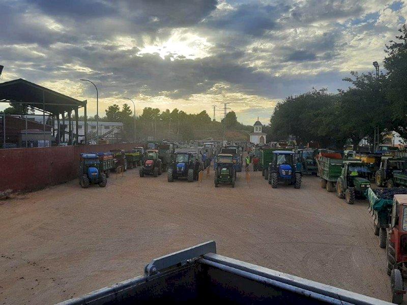 Viticultores de la UCI hacen cola con sus tractores para tomar el grado. Foto: UCI Iniesta