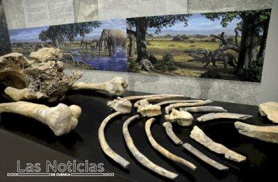 El Mupa se suma al Día del Fósil con un programa de charlas divulgativas